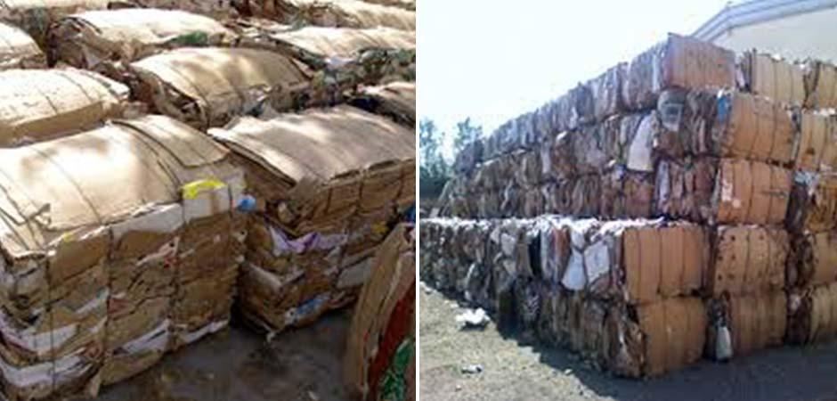 Zvezda-doo-Export-Import