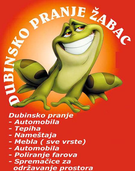uklanjanje vlage iz vašeg doma žabac